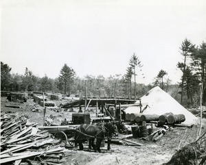 Portable lumber mill