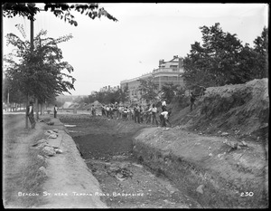 Distribution Department, Low Service Pipe Lines, backfilling on Beacon Street, near Tappan Road, from the east, Brookline, Mass., Jul. 6, 1896