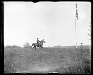 Unidentified horse and rider