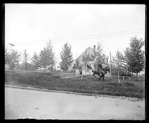 Unidentified man on horse in motion