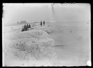 Unidentified group of people along water's edge in winter