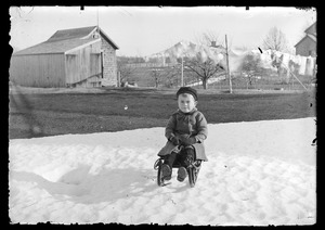 Young child on sled in snow