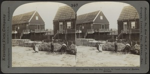 Home from the hayfields by Canal, Island of Marken, Holland