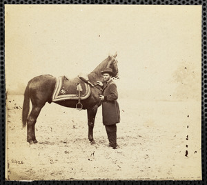 "Horse ""Lexington"" C [Cold] Harbor, Virginia, June 14, 1864"