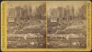 View from east side of Reservoir, showing west wall and Gate-Keeper's House--Williamsburg