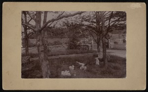 Pine Lawn, Clark's Point, New Bedford