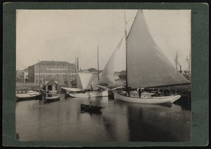 Sailboats in New Bedford Harbor