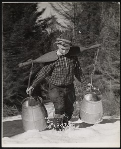 Collecting maple sap - Wilmington, Vt.