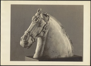 Porcelain horse head