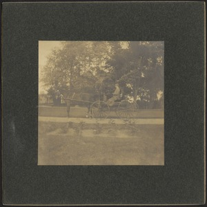 Man in horse and buggy, possibly G. Otto Kunhardt