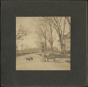 Ashdale Farm. Unidentified woman standing with dogs near house on Andover St.