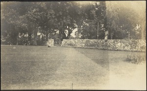 Ashdale Farm. Stone wall and lawn with dog.
