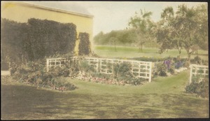 Ashdale Farm. Hand-tinted photo of gardens and barn