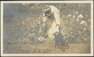 Ashdale Farm. Gertrude Kunhardt with dogs in garden