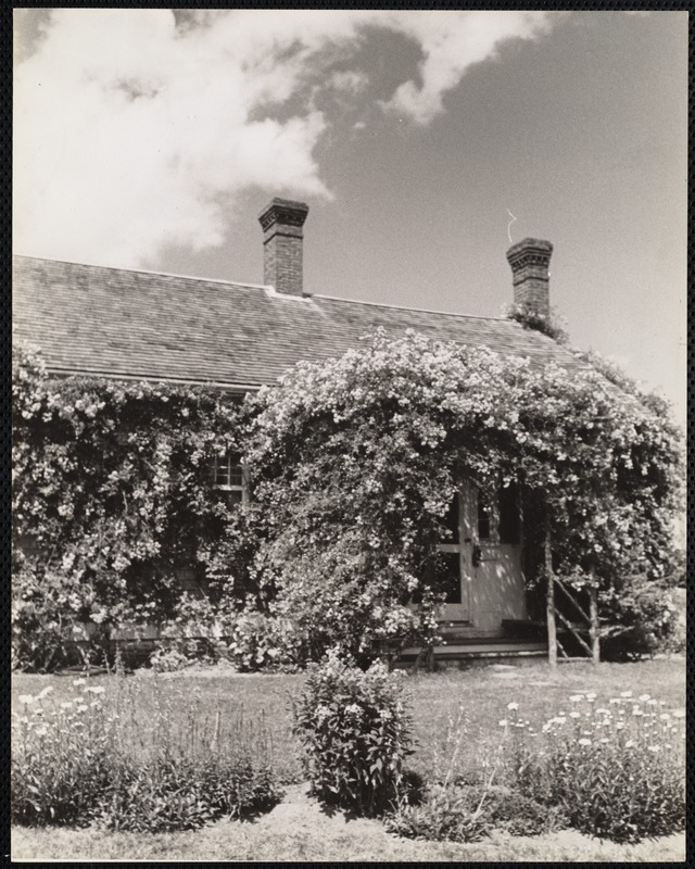 Rose cottage, Chatham