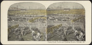 Union stock yards and packing houses, Chicago, Ill.