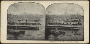 Steamship docks above Brooklyn Bridge