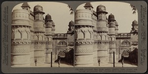 Celebrated Man Singh Palace, Gwalior, India