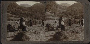 A farmer's family, making hay at Roldal, Norway
