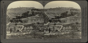 Garden of Gethsemane and Mount of Olives from eastern wall, Jerusalem
