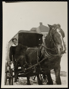 Boy posing with horse and carriage