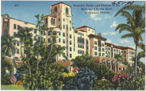 Beautiful palms and flowers of the Hollywood Beach Hotel, Hollywood, Florida