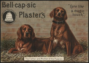 "Bell-cap-sic Plasters, ""Cure like a magic touch."" The father and mother of the puppies."