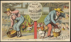 To make hens lay use Sheridan's Condition Powder. No eggs? Confound the hens! Ah? The Sheridan's powder did it!