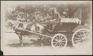 Langley's Furniture Co., Tibbet's Bakery, African American driver