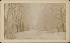 Ice storm, Green Street, looking south