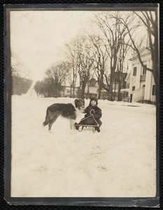 Lenox: boy on sled & his dog in front of Lenox Library