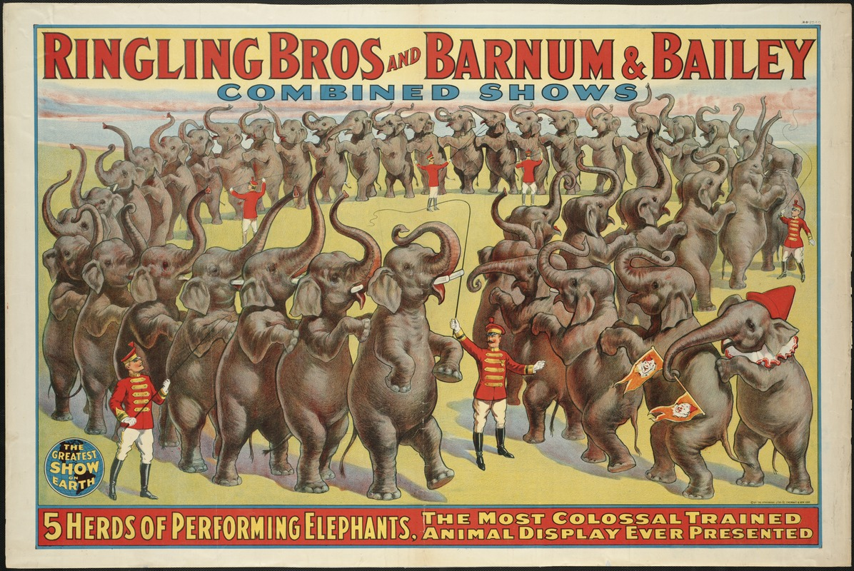 Ringling Bros and Barnum & Bailey Combined Shows