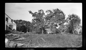 Wreckage caused by storm at South Weymouth. August, 1920