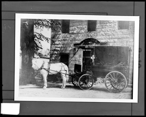 First patrol wagon and horse