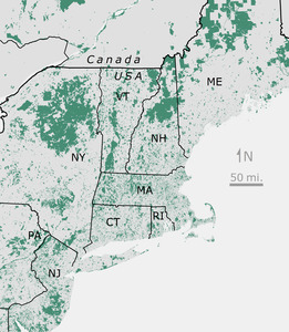 Conserved Land of New England