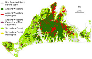 Woodland History in the Modern Landscape