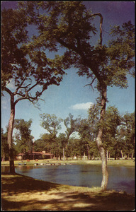 Amon Carter YMCA Camp