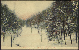 Winter scene in Forest Park, No. 2, Springfield, Mass.