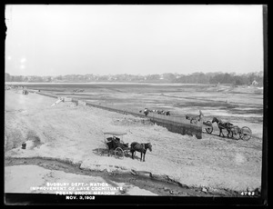 Sudbury Department, improvement of Lake Cochituate, Pegan Brook Meadow; when nearly completed, Natick, Mass., Nov. 3, 1902