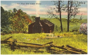 T15. That old cabin home