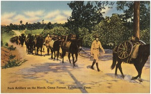 Pack artillery on the march, Camp Forest, Tullahoma, Tenn.