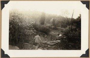 Site of the old Adams saw and grist mill on River Meadow Brook- James H. Wilkins in foreground