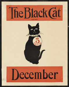 The black cat December