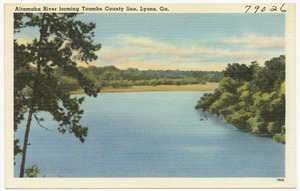 Alhambra River forming Toombs County line, Lyons, Ga.