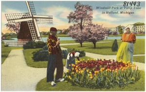 Windmill Park at Tulip Time in Holland, Michigan