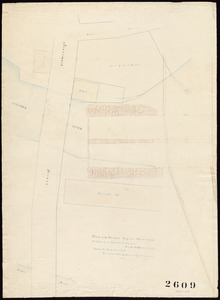 Plan and profile of part Merrimack Street near Concord River. By Mead & Butterfield