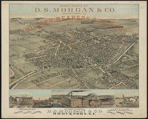 View showing the works of D.S. Morgan & Co., Brockport, N.Y