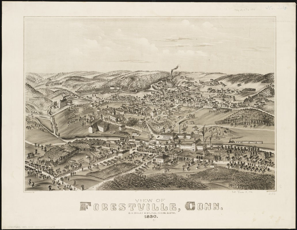 View of Forestville, Conn