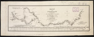 Plan and profiles of surveys from Farm Pond in Framingham and Long Pond in Natick, for supplying water to the City of Boston