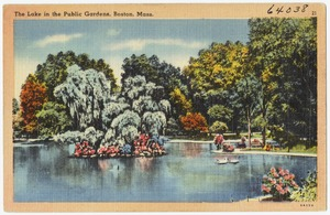 The  lake in the Public Gardens, Boston, Mass.
